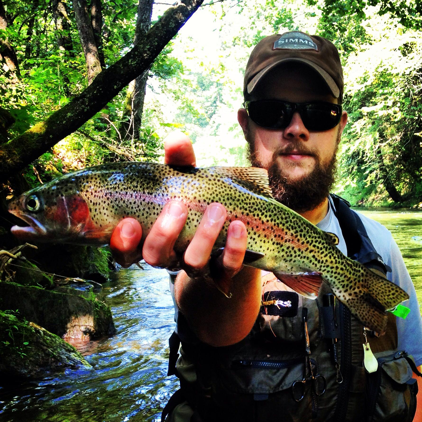 Great smoky mountains national park nc smokies things to for Smoky mountain trout fishing
