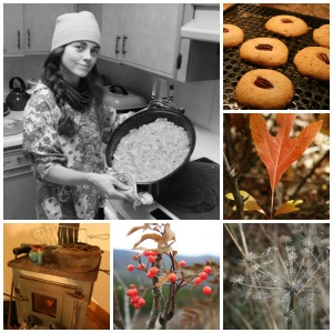 liz collage thanksgiving